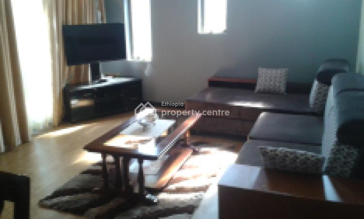Fully Furnished 2 Bedroom Villa House in Megenagna, Megenagna, Bole, Addis Ababa, House for Rent