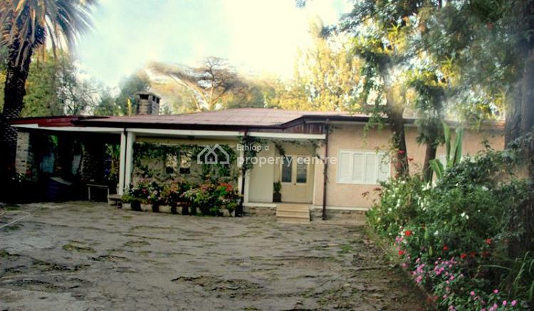 Elegant Bungalow, German Square, Bole, Addis Ababa, Detached Bungalow for Rent