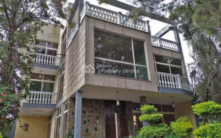 Magnifcent G+1 Home, Old Airport, Bole, Addis Ababa, Detached Duplex for Rent
