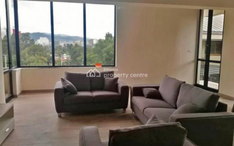 Luxurious Furnished Apartment, Bole, Addis Ababa, Flat for Rent